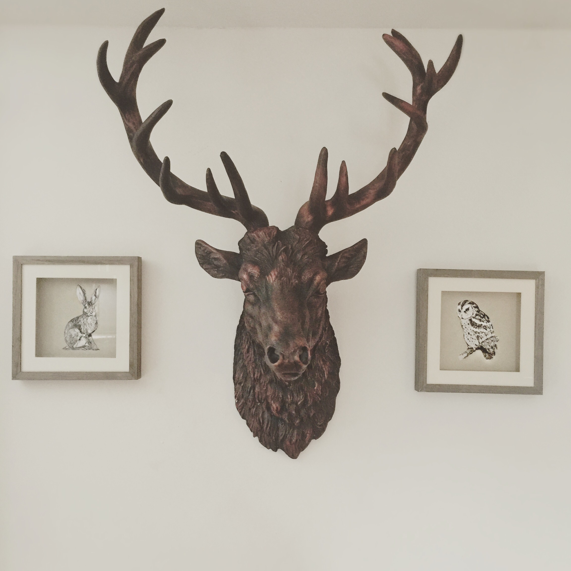 Living room gothic - stag head